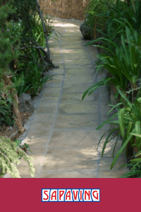 Paved Walkway In Garden